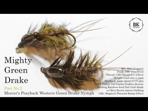 Mighty Green Drake No.2 -  Mercer's Poxyback Green Drake Nymph (in Europe - Epeorus assimilis) by BK