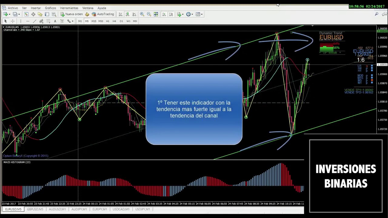 Day trading and options trading the currency market