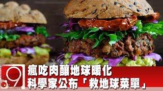 瘋吃肉釀地球暖化 科學家公布「救地球菜單」《9點換日線》2019.09.16