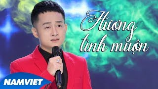 Hương Tình Muộn - Trịnh Nam Phương