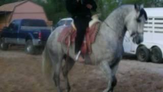 felipe corona bailando el caballo el baliente 2