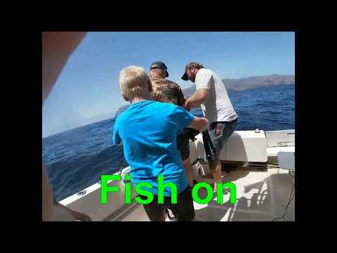 Big Game Fishing Tenerife 2019