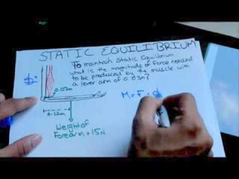 Biomechanics Static Equilibrium Tutorial Example 1