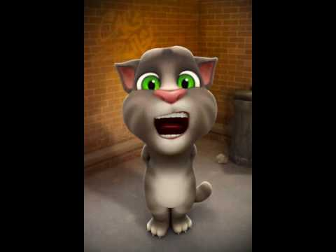 Tinky wingky dipsy lala po~ talking tom cat