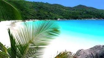 GILBERT MONTAGNE  sous le sunlight des tropiques