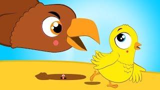 El Pollito Amarillito y muchas máss Cancion Infantil | Los Amiguitos