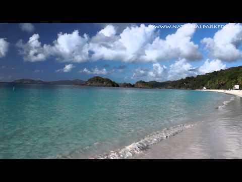 Trunk Bay in Virgin Islands National Park (1080p)