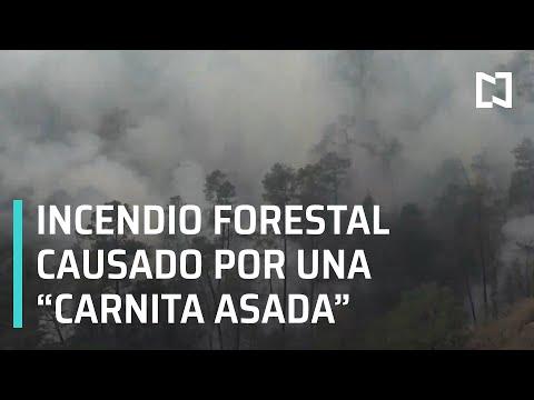 Causas del incendio forestal en Santiago Nuevo León y Arteaga Coahuila - En Punto