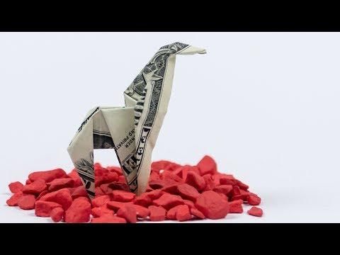 Money Origami Animals | 360x480