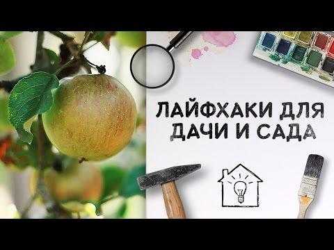 Лайфхаки для дачи и сада [Идеи для жизни]