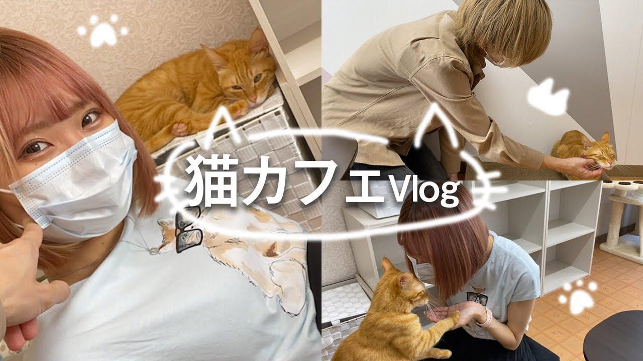 【vlog】超インドアカップルの個室猫カフェデート🐱猫にも彼氏にもデレデレすぎた…