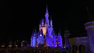 Live from Walt Disney World's Magic Kingdom!
