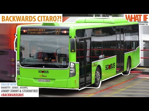 BACKWARDS CITARO?! - What If #backwardsbus Special #03/03!