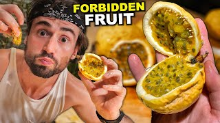 Canadian Eats Philippines JUICIEST FRUIT for the First Time! (Extremely Slimy Fruit)