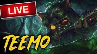 Teemo League of Legends Ranked Game EUW - LoL Top Stream