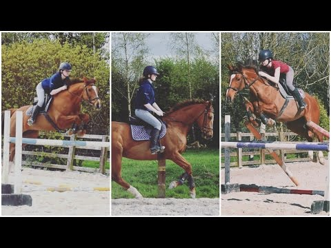- 3 Showjumping Exercises -