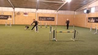 Thomas Berger & Soey JO - 2.WC Pottendorf 26.01.2014
