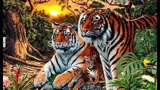 """Алмазная вышивка  """"Тигры"""" Завершение!"""
