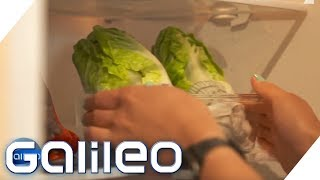 Checkerwissen rund um den Kühlschrank | Galileo | ProSieben