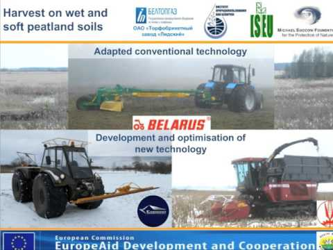 Biomass from reeds for energy production in Belarus – Andreas Haberl