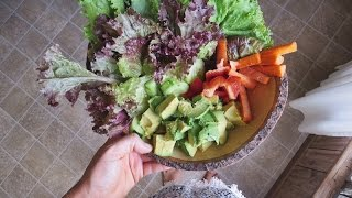 What I Ate in a Day for my Vegan Pregnancy