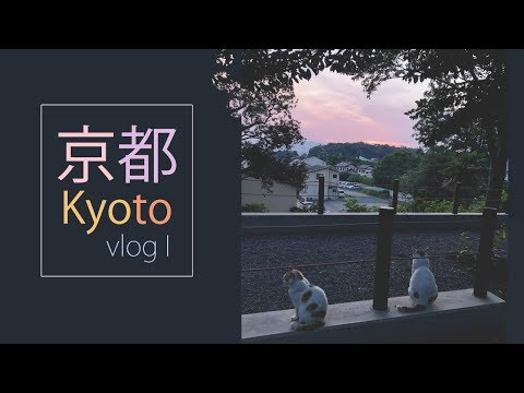 JAPAN VLOGS | KYOTO · Philosopher's path, my room and drawing