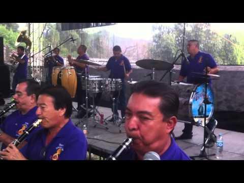 AL RITMO DE LA BANDA - BAILANDOLA - La Tradicional De Mazatlan
