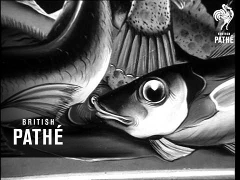 Exhibition Of Surrealistic Paintings (1964)