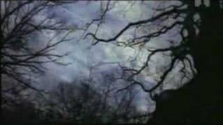 Runrig - Protect and Survive
