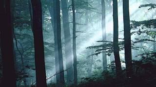 Gothic Instrumental Music - Twilight 2