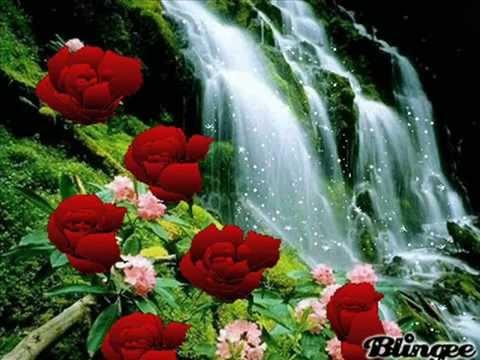 Rosas Para Mi Gran Amiga Ysabel Youtube
