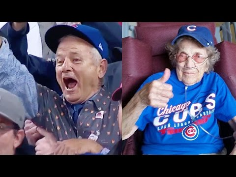 Best Cubs World Series Win Fan & Celebrity Reactions
