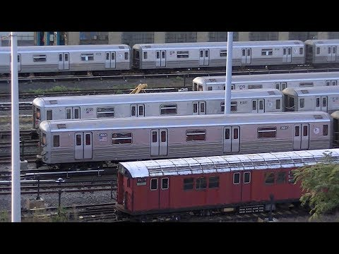 NYC Subway: R142/a (4) Trains @ Bedford Park Blvd and Jerome Avenue Yard Action