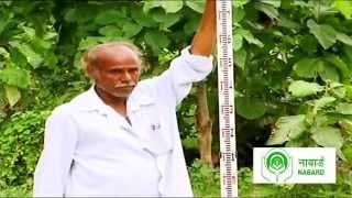 PHAD Irrigation Model