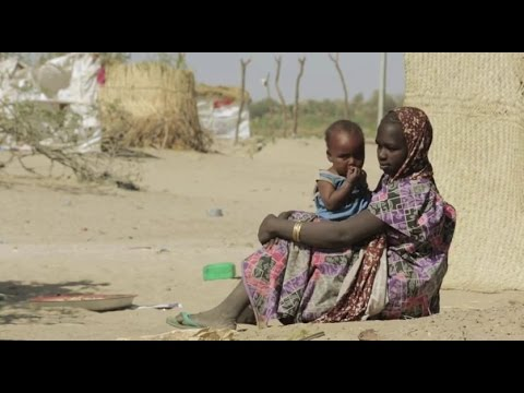 WFP Stands By Nigerian Refugees Despite Growing Insecurity