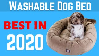 Top 5 Best Dog Beds Washable in 2020 | Best Washable Dog Beds Review