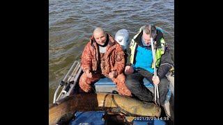 Рыбалка в Астрахани весенний сом