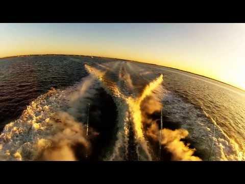 Offshore Shark Fishing Trip   Long Island, New York