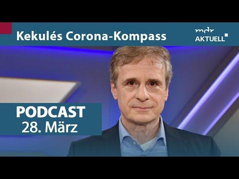 Podcast - Kekulé