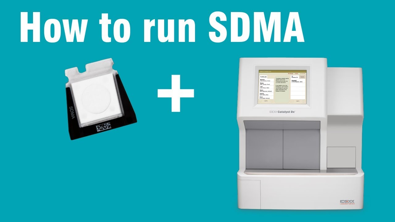 How to run SDMA on a Catalyst Dx® Chemistry Analyzer