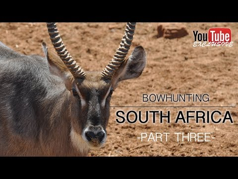 Bow Hunting South Africa 2017 - Part 3