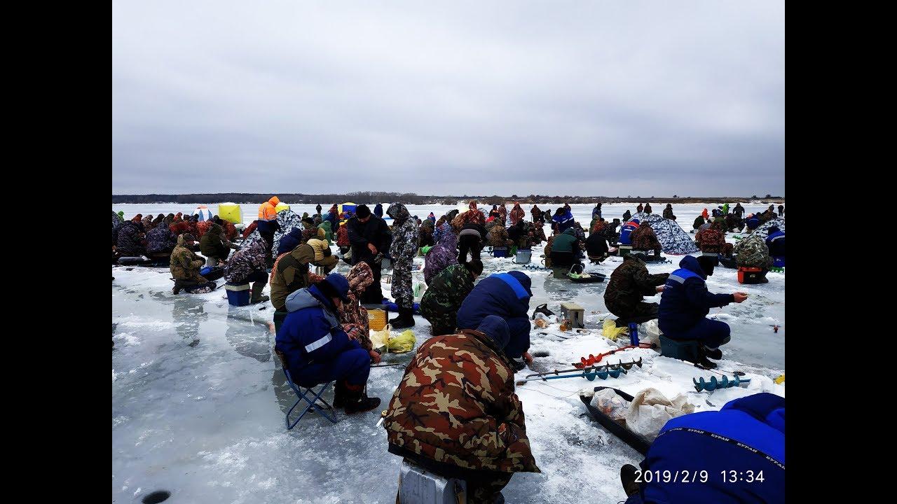 Рыбалка зимой 2019 БЕШЕНЫЙ КЛЕВ РЫБА ЗАСТРЕВАЕТ В ЛУНКЕ!!! ПОДХОДЯТ ШАКАЛЫ УТОПИЛ КАМЕРУ