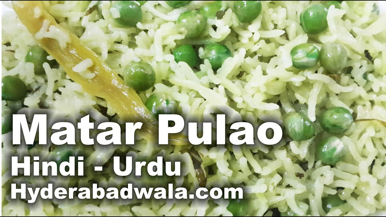 Matar pulao recipe video hindi urdu youtube matar pulao recipe video hindi urdu forumfinder