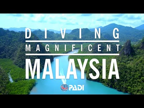 Crazy, Awesome Dive Lifestyle | Diving Magnificent Malaysia 🐟