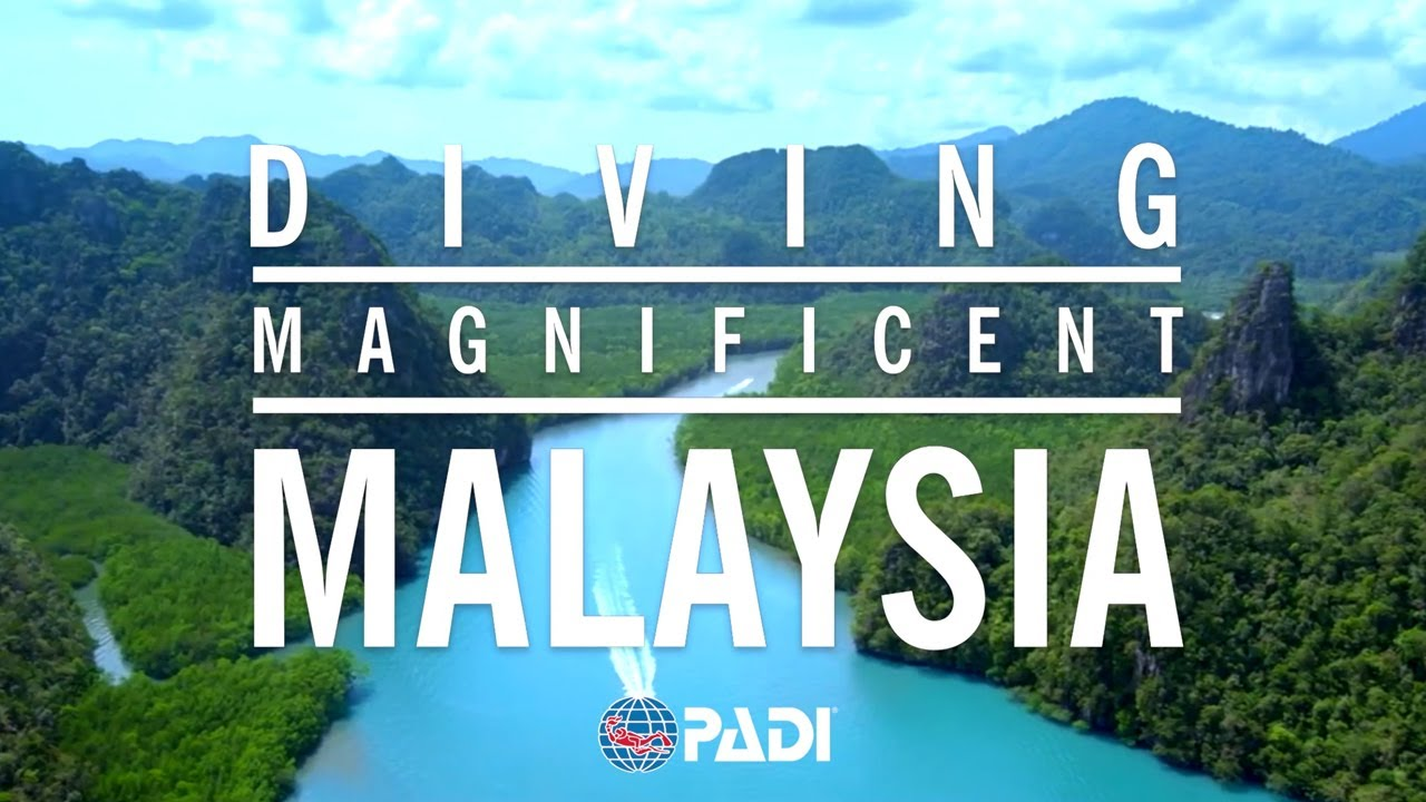 Diving Magnificent Malaysia 🐟