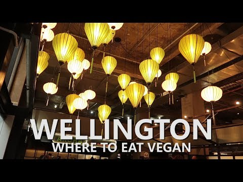 WELLINGTON NZ DAY TRIP // WHERE TO EAT VEGAN // TRAVEL TIPS