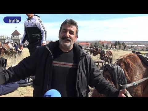 Най-добрите коне мериха сили в Ново село