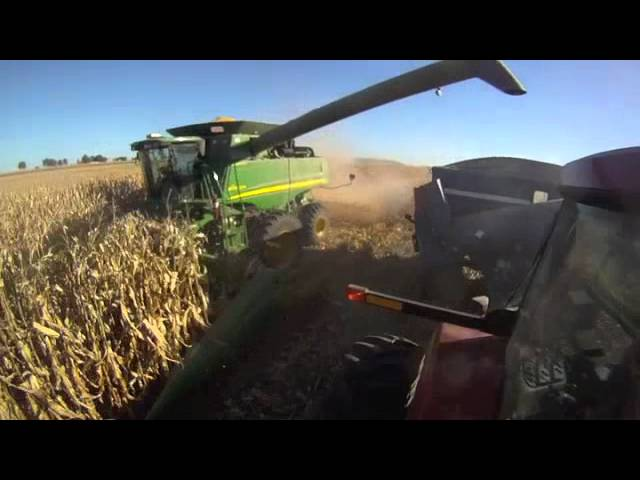 Case IH 305 Magnum Tractor & John Deere 9770 Combine in Awesome Wisconsin Corn Harvest!! Travel Video