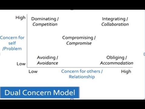 Dual concern model movie