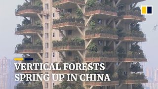 "Gambar cover Chinese housing projects go green with ""vertical forests"""
